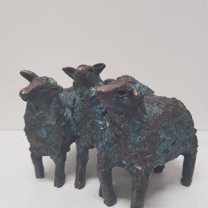 Gerreke van Veen - 3 schapen