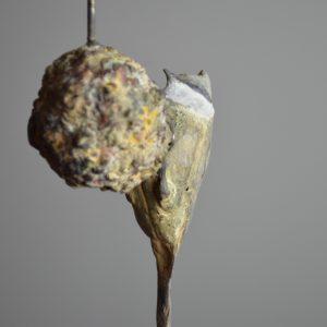 Kuifmees op vetbal - Chris Gadiot