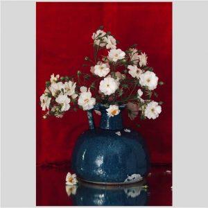 Bloemstilleven met roos - Jacques Splint