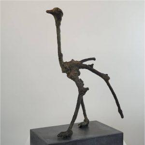 Struisvogel - Chris Gadiot