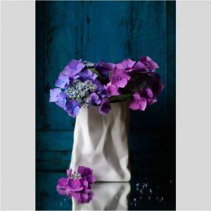 Bloemstilleven met blauwe hortensia - Jacques Splint