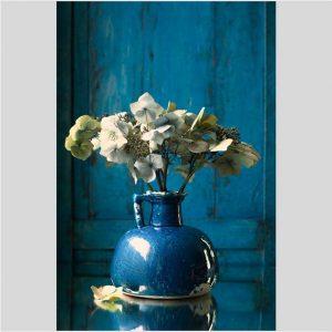 Bloemstilleven met witte hortensia - Jacques Splint