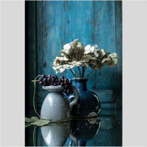 Bloemstilleven met hortensia en druiven - Jacques Splint