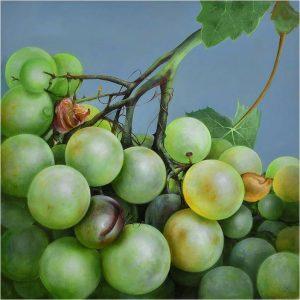 Sappige groene druiven - Viv Hermans