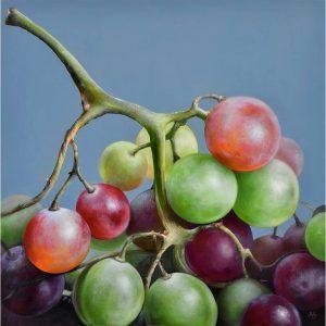 Sappige rode druiven - Viv Hermans