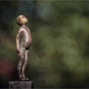 Zonnetje - Rose van den Hurk